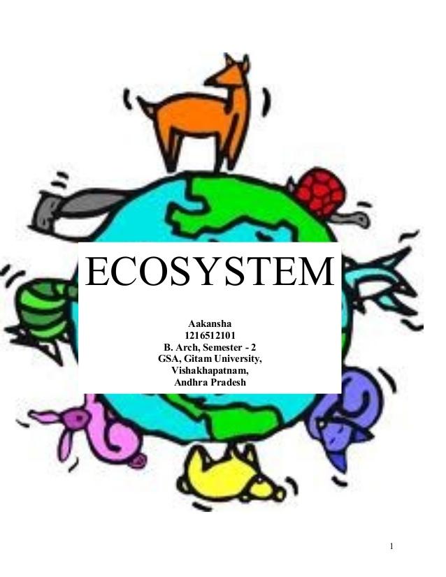 Wilderness clipart ecosystem Ecosystem Semester 1 ECOSYSTEM 1216512101