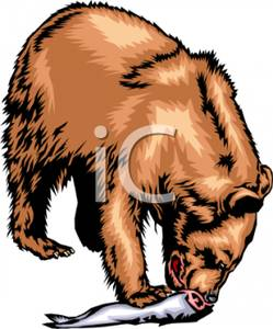 Wilderness clipart grizzly Grizzly a Eating Picture Fish