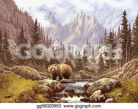 Wilderness clipart grizzly Drawing A in stream Clipart