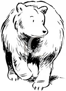 Wilderness clipart grizzly And Bear Grizzly Image Clip