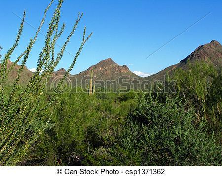 Wilderness clipart mountain view  View Stock Mountain Desert
