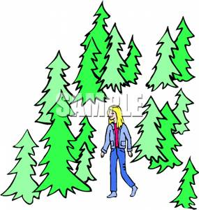 Wilderness clipart woods Image Clipart the Image In