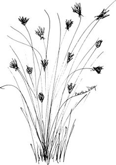 Wildflower clipart black and white On Pinterest  Clipart isolated