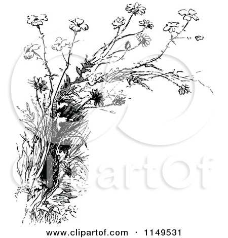 Wildflower clipart black and white No Art by Vintage Wildflowers