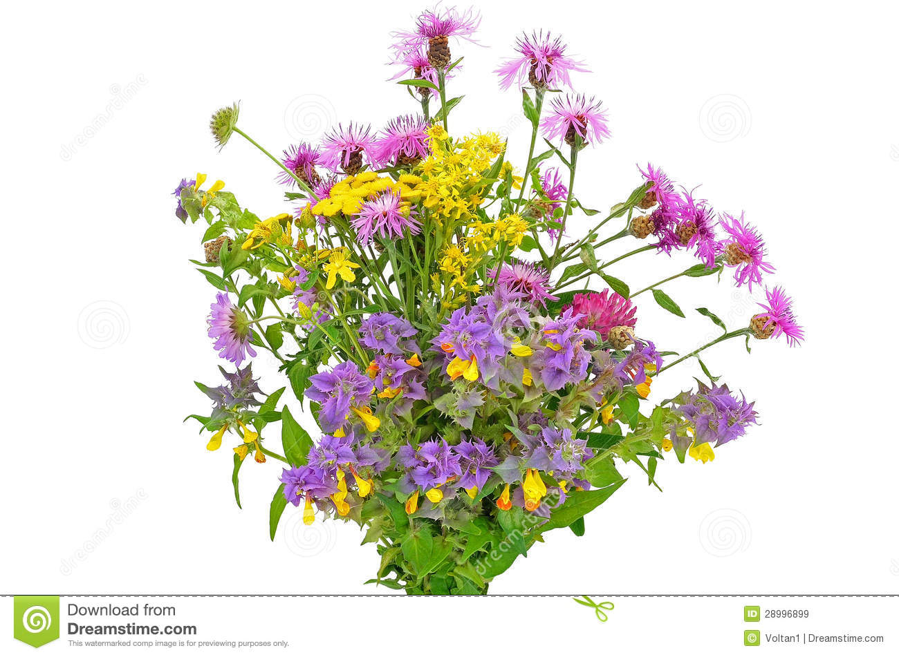 Wildflower clipart flower bouquet Bouquet Wildflowers Clipart Wildflowers Of