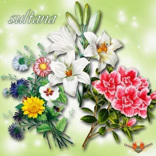 Wildflower clipart flower bouquet Nature animals clipart  Free