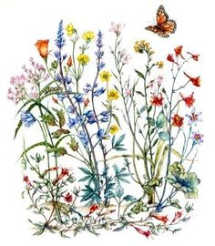 Wildflower clipart flower bucket This  one i've to