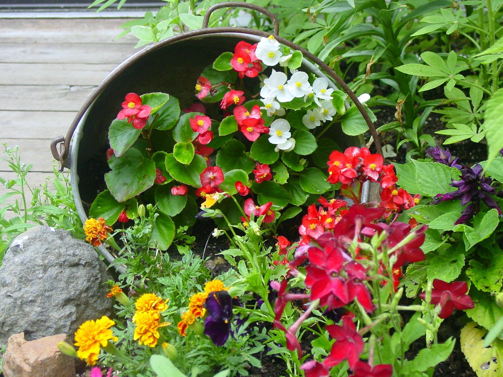 Wildflower clipart flower bucket Flowers Perfect Bucket Of Of