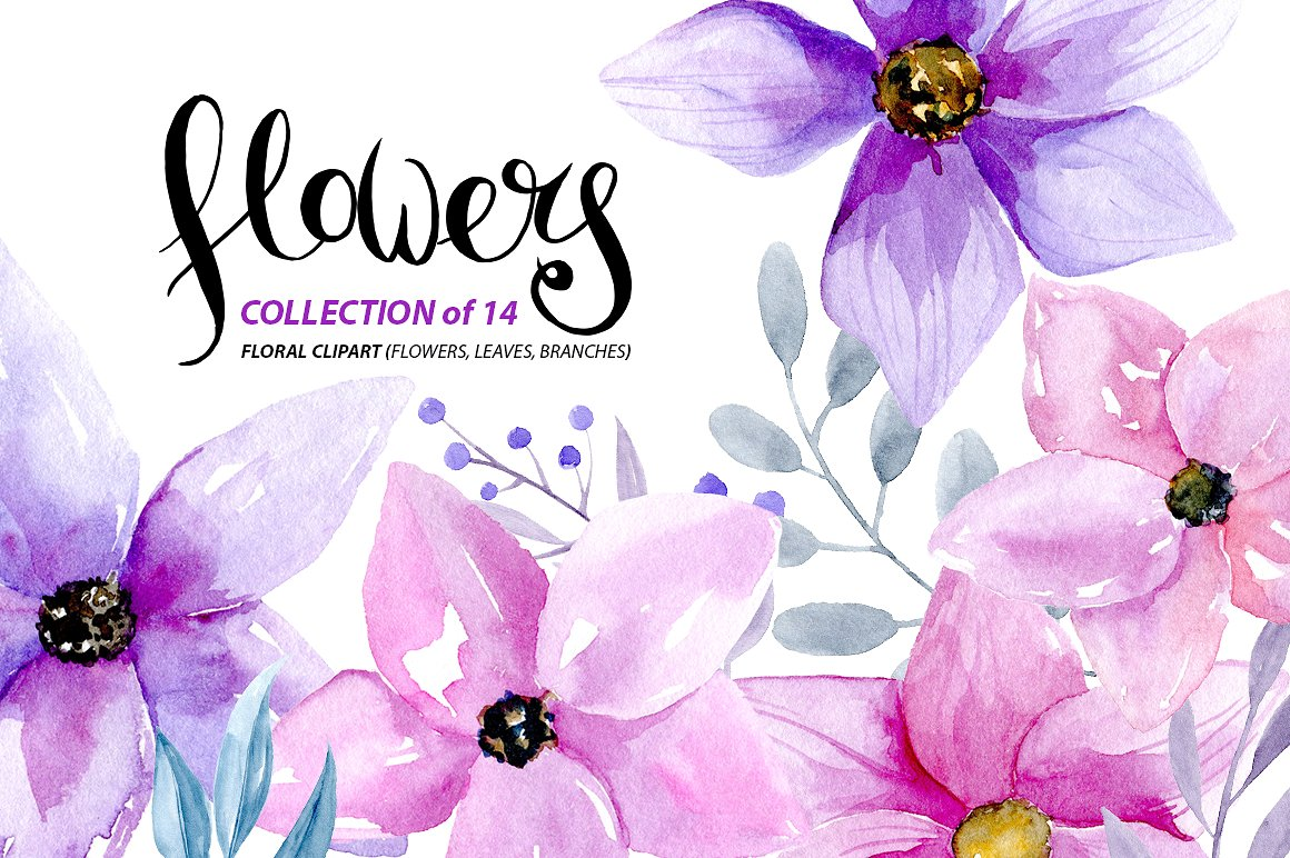 Wildflower clipart pink leaves Pink ~ on Illustrations Market