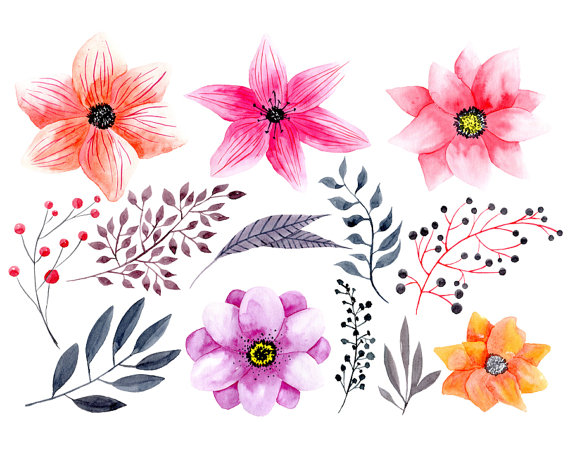 Wildflower clipart pink leaves File  floral Boho bright