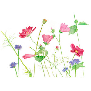 Wildflower clipart simple flower 10 Wildflowers 8 Painting 8