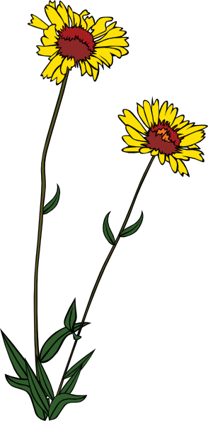 Wildflower clipart small plant Vector Clip Art small