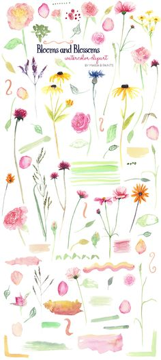 Wildflower clipart southwest Clip Flowers Watercolor By Clip