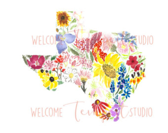 Wildflower clipart texas State Texas Wildflowers Etsy Bluebonnets