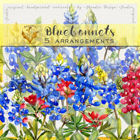 Wildflower clipart texas  clipart clipart wildflower Bluebonnet
