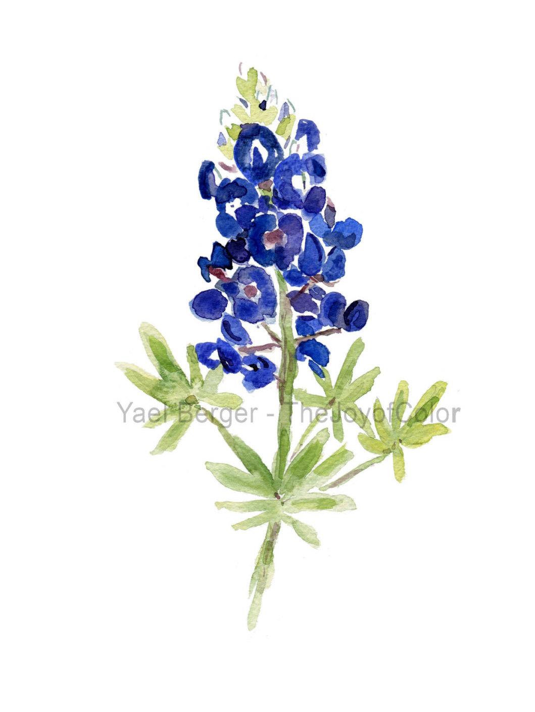 Wildflower clipart texas Bluebonnet Cliparts Bonnets Cliparts clip