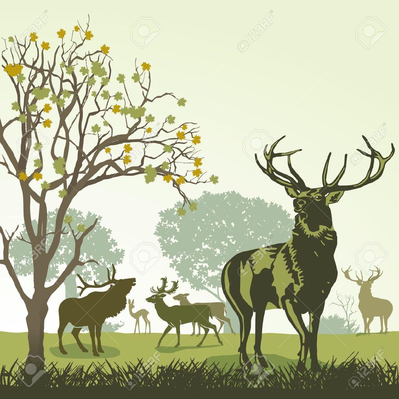 Wildlife clipart  Wildlife clipart Download Free