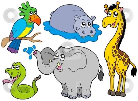 Wildlife clipart Wildlife Art Clipart Clip Download