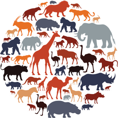 Wildlife clipart african wildlife Wildlife Cliparts Cliparts African Animals