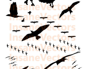 Wildlife clipart bird flock Download Flock svg Flock Download