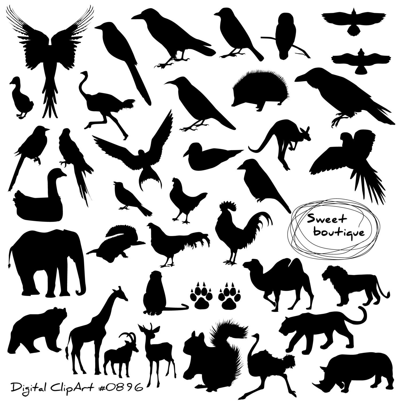 Wood Duck clipart woodland Animal African art Art Birds
