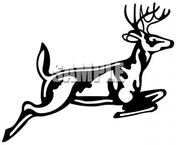Wildlife clipart buck White And Clipart Clipart Free