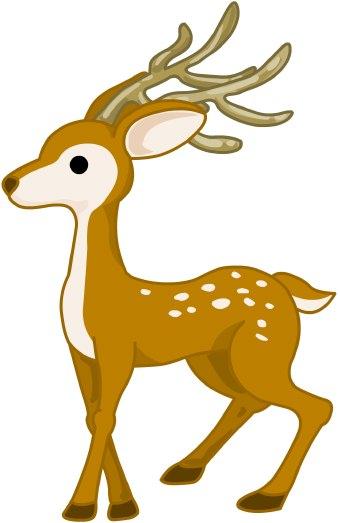 Wildlife clipart buck Art Deer  clip