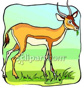 Wildlife clipart grass 70 Clipart Clipart Gazelle Art