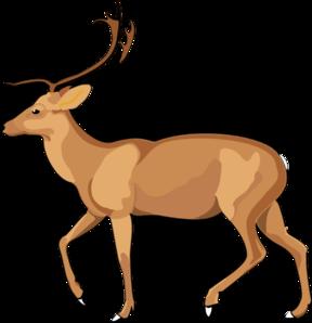 Wildlife clipart mammal Clker Animal clip Art at