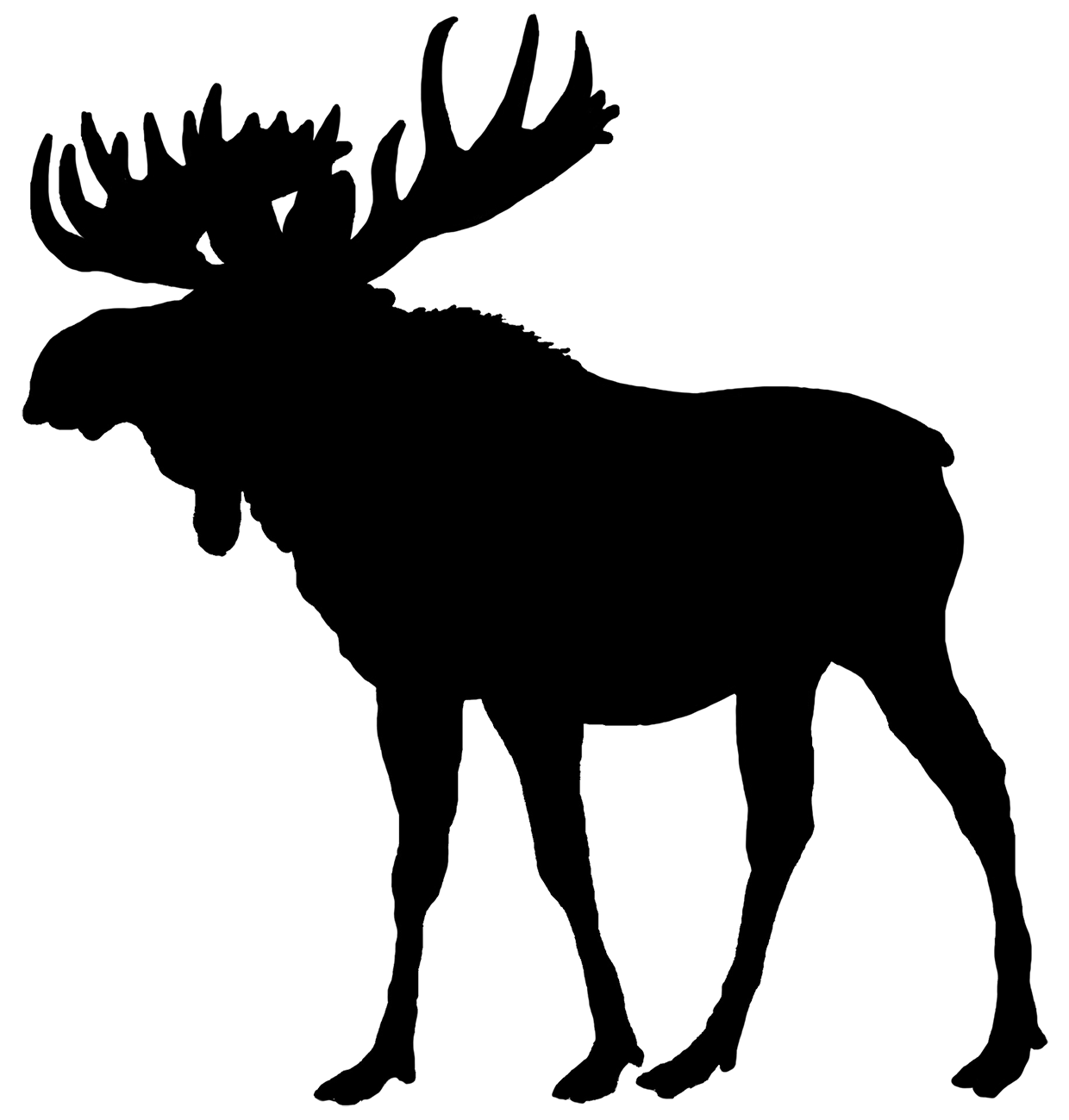 Wildlife clipart silhouette Silhouette of bull Clip moose