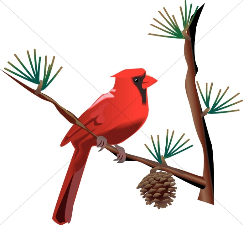 Wildlife clipart songbird Wildlife Images Wildlife on Clipart