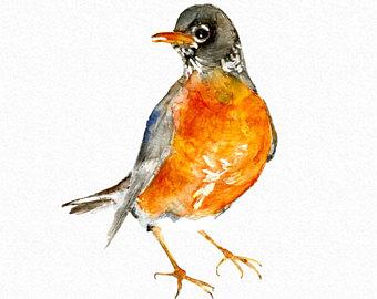 Wildlife clipart songbird Clipart Robin summer clipart clipart