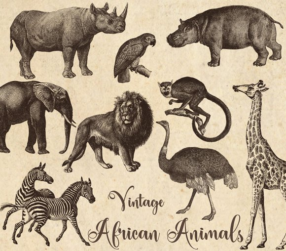 Wildlife clipart vintage animal Clipart on Vintage Animals Animals