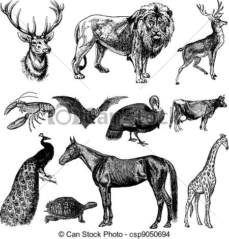 Wildlife clipart vintage animal Or Animal vintage Set EPS