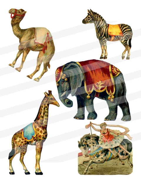 Wildlife clipart vintage animal Png Circus Elephant jpg Images