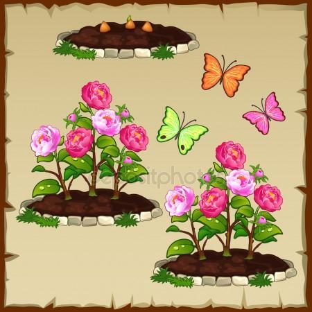 Window clipart flower bed Flower Stock Stock flower Vector