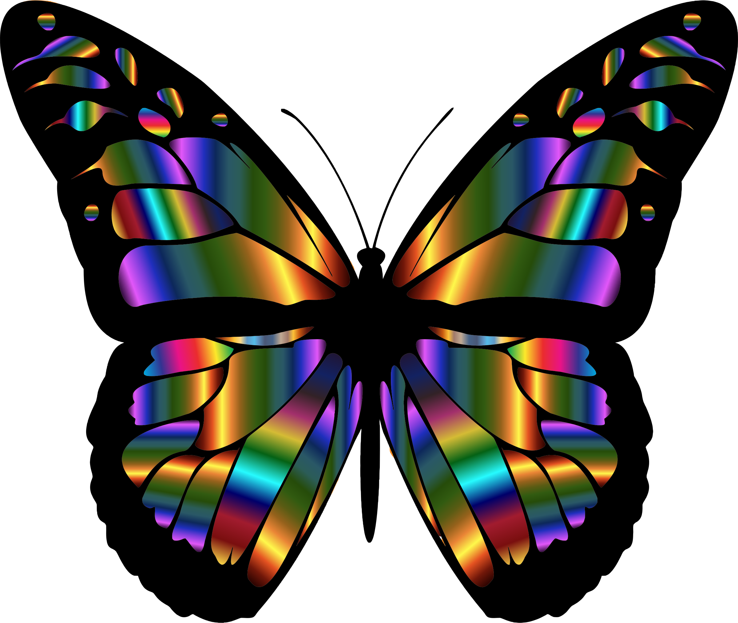 Colouful clipart butterfly wing #13