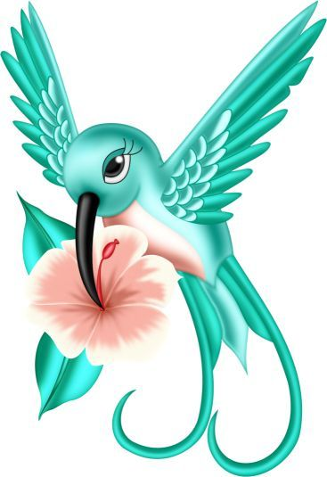 Wings clipart colorful bird 81 on images art Pinterest