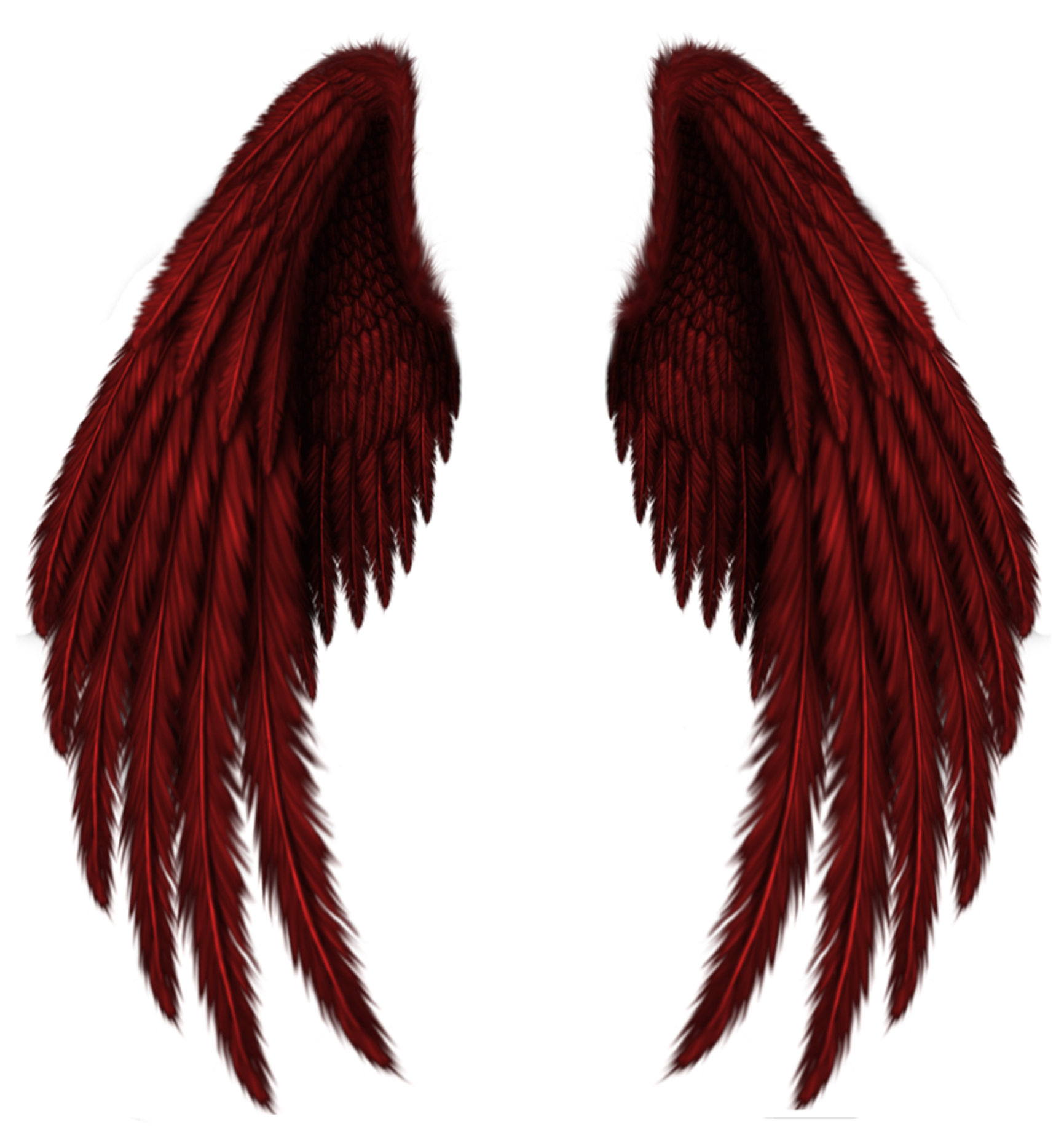 Wings clipart decorative Clipart size Red Transparent View