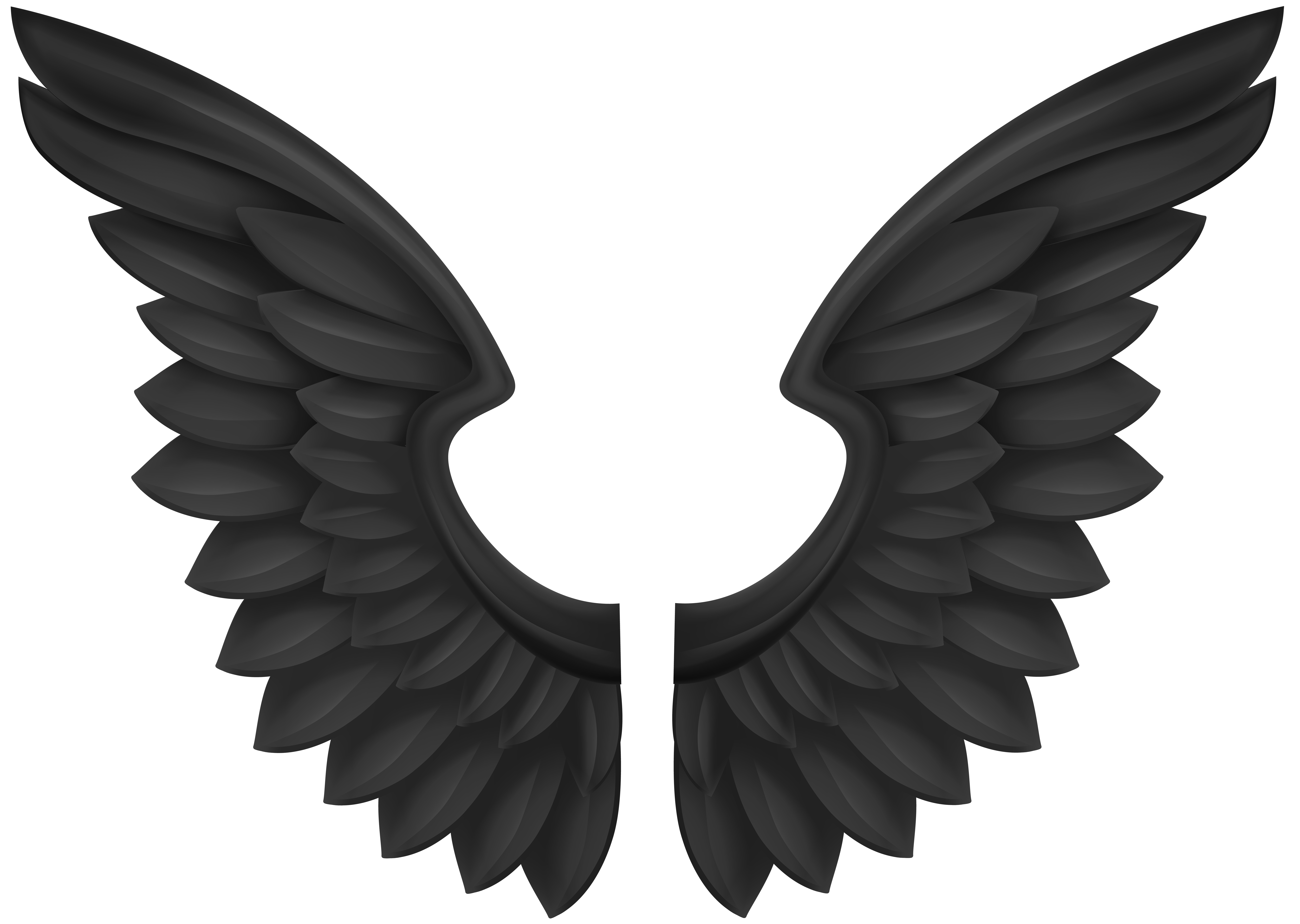 Wings clipart decorative Clip size Wings Black View