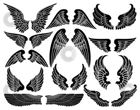 Wings clipart detailed Angel vector of by vector