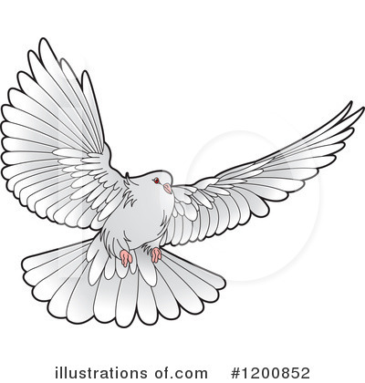 Wings clipart dove Lal Dove by Clipart (RF)