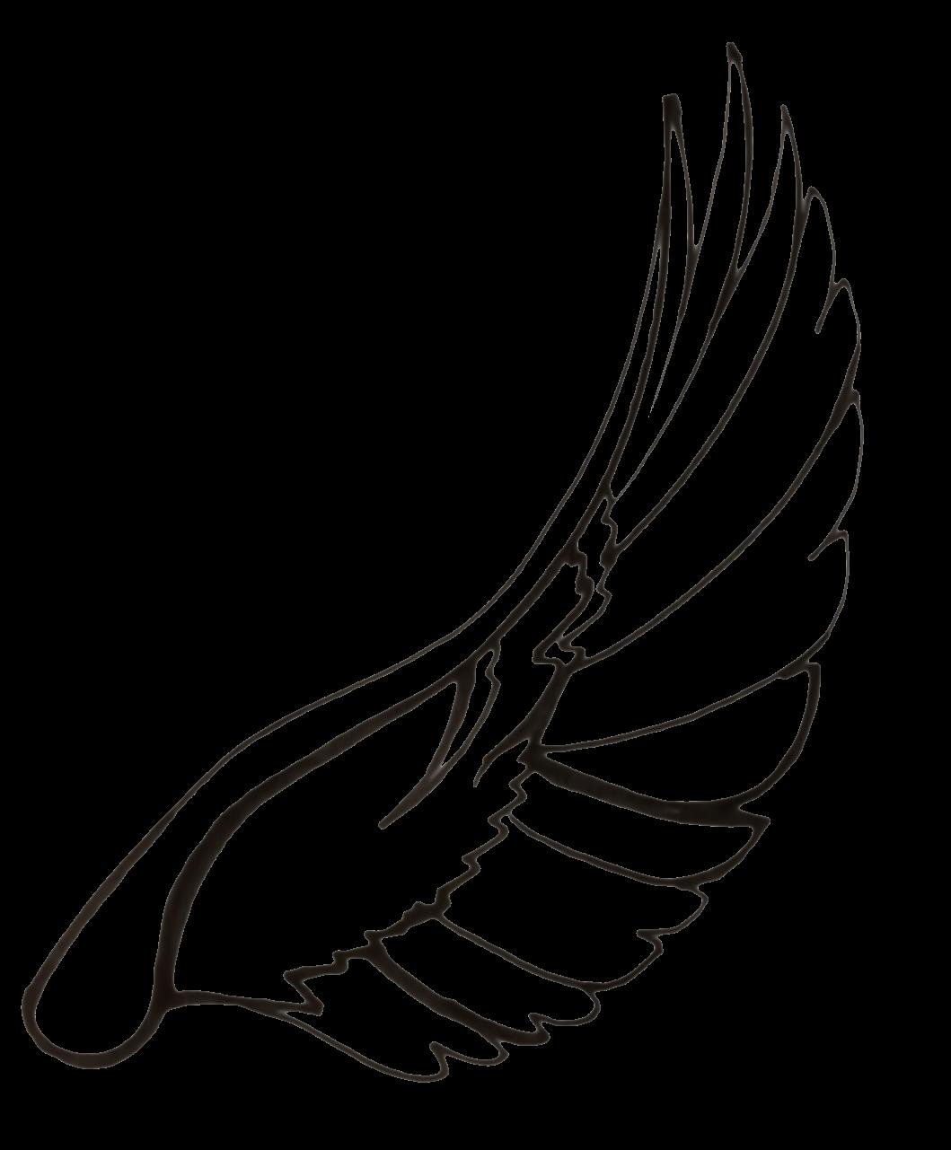 Wings clipart dove  Art on Dove Love