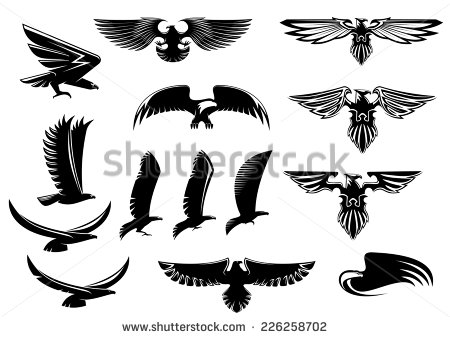 Bird clipart baaz Showing and vector and with