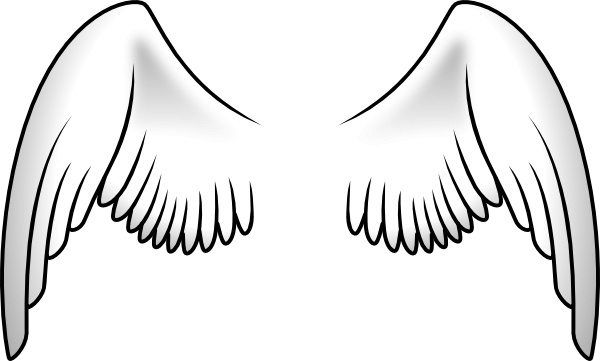 Wings clipart feather  in vector Open vector