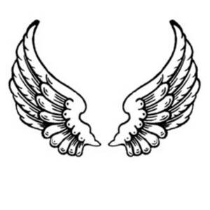 Wings clipart feather Feather Feather Download Clipart Wings