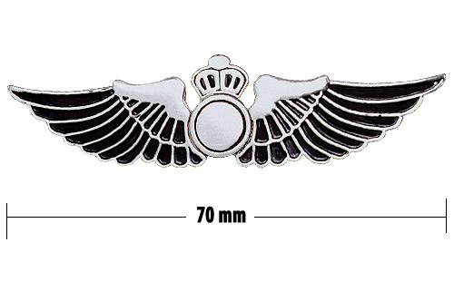 Wings clipart flight attendant Cliparts Wings Pins Flight Flight
