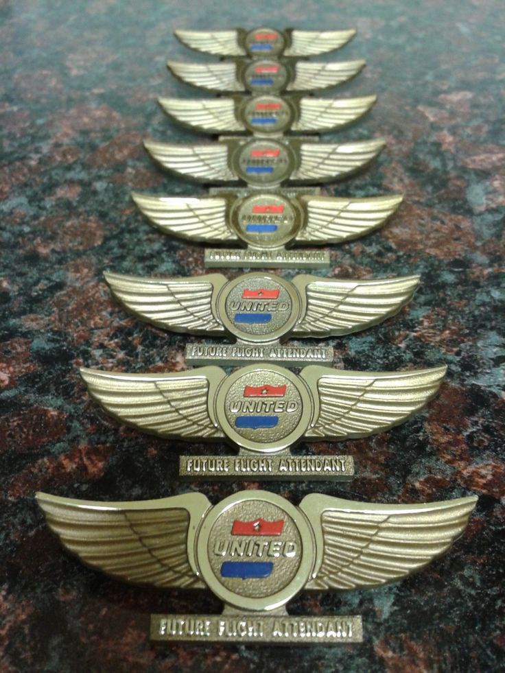 Wings clipart flight attendant Pins wonder Flight Attendant best