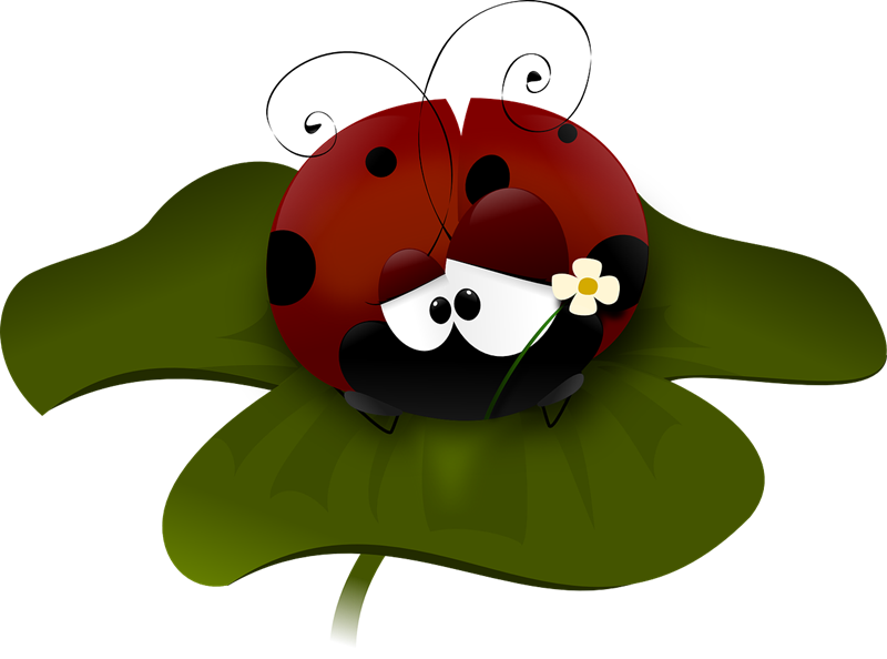 Wings clipart ladybug Ladybug Clip Public Art &