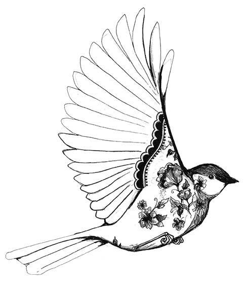 Wings clipart pretty bird On Ideas 191 best Pinterest